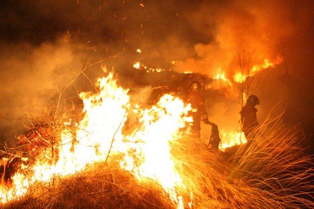 Incendio boschivo di notte sulle alture di Imperia
